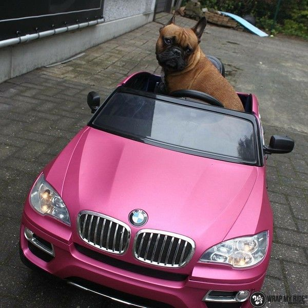 BMW X6 mini matte metallic pink, Carwrapping door Wrapmyride.nu Foto-nr:11353, ©2020