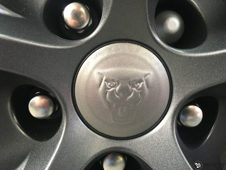 Jaguar F-type eagle run, Carwrapping door Wrapmyride.nu Foto-nr:10969, ©2021